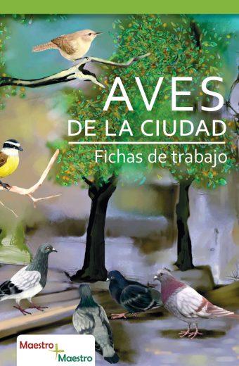 Aves de la Ciudad. CARATULA